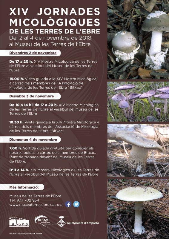 Museu de les Terres de l´Ebre : agenda : XIV Jornades Micològiques de les Terres de l'Ebre