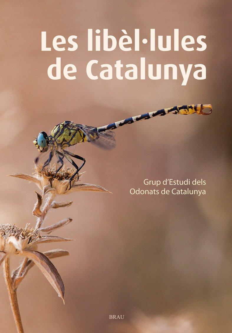 """Museu de les Terres de l´Ebre : agenda : Presentació del llibre """"Les Libèl·lules de Catalunya"""" i conferència """"Ales de libèl·lula, una recerca que pot salvar vides"""""""