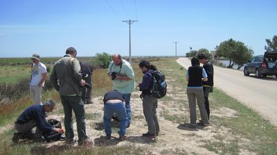 Museu de les Terres de l´Ebre :  : El Museu de les Terres de l'Ebre Punt de Biodiversitat Virtual