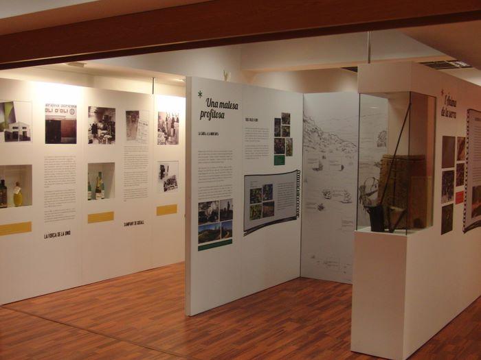 Museu de les Terres de l´Ebre :  : El Consorci del Museu i l'ajuntament de Godall aproven un conveni per obrir el Centre d'Interpretació de la Serra de Godall