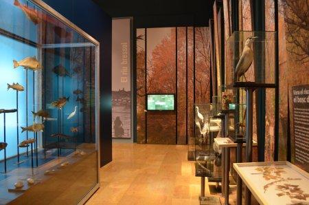 Museu de les Terres de l´Ebre : Serveis turístics : Museu de les Terres de l'Ebre
