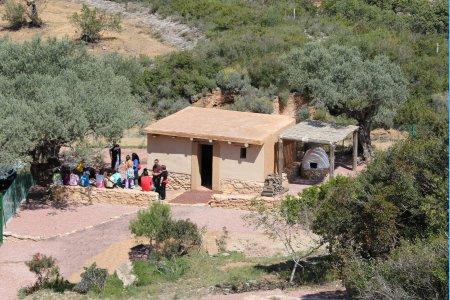 Museu de les Terres de l´Ebre : Serveis turístics : El poblat Iber de la Moleta del Remei, centre del litoral ilercavó