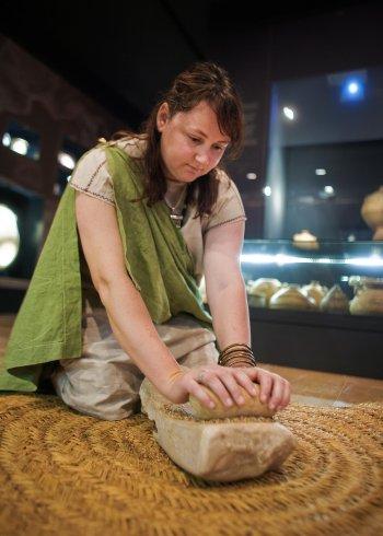 Museu de les Terres de l´Ebre : Serveis turístics : Tallers