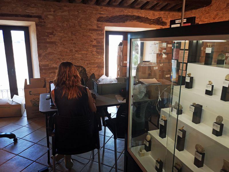 S'inicien les taques de documentació de la col·lecció paleontològica de J. Antoni Valls