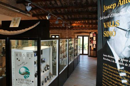 Museu de les Terres de l´Ebre :  : S'inicien les taques de documentació de la col·lecció paleontològica de J. Antoni Valls