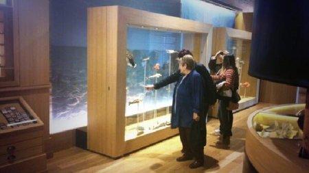 Museu de les Terres de l´Ebre : Serveis educatius : Museu de la Mar de l'Ebre, biodiversitat marina del cap de Terme a Sol-de-Riu
